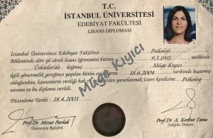 lisans-diploma